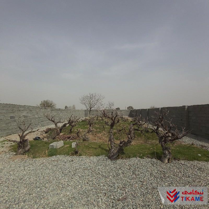 باغچه ۴۵۰ متری دنج و زیبا